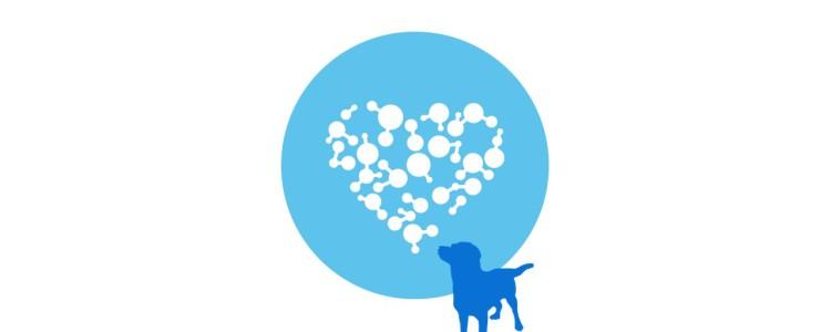 Terapia Asistida Canina
